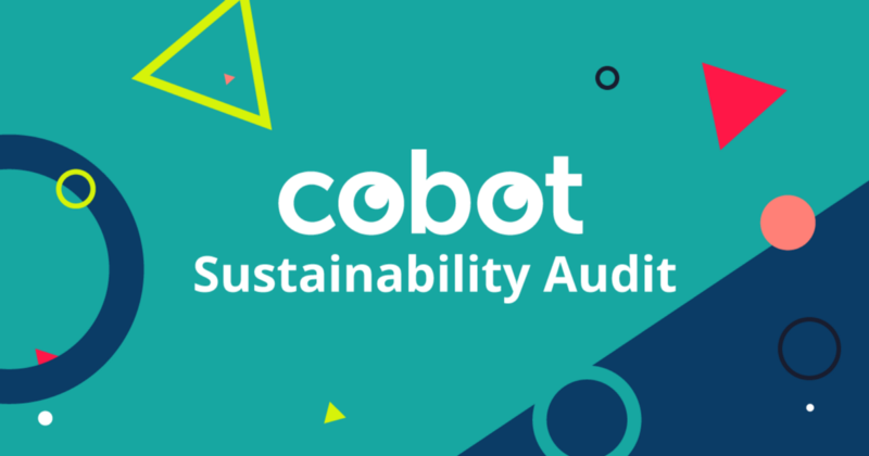 The Cobot Sustainability Audit